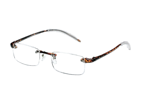 Picture of Tortoise Reading Glasses